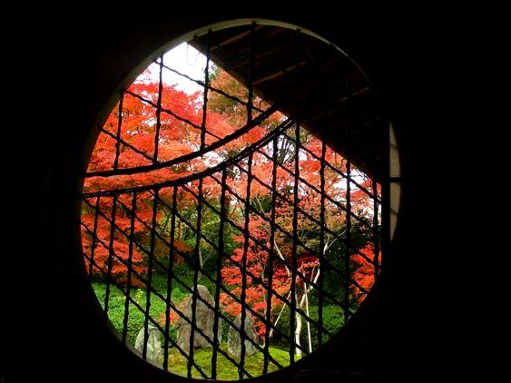 京都の秋.jpg